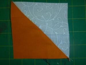 P1000684 half square trianglr