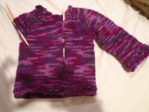 DSC00030 purple sweater w one sleeve