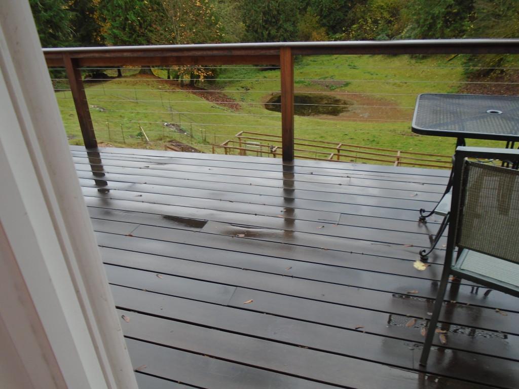 DSC00115 rain